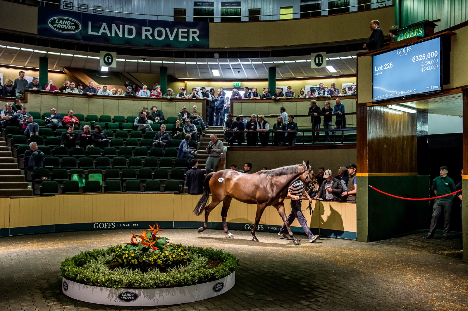 Paul Nicholls Secures €325,000 Record Top Lot At Goffs Land Rover