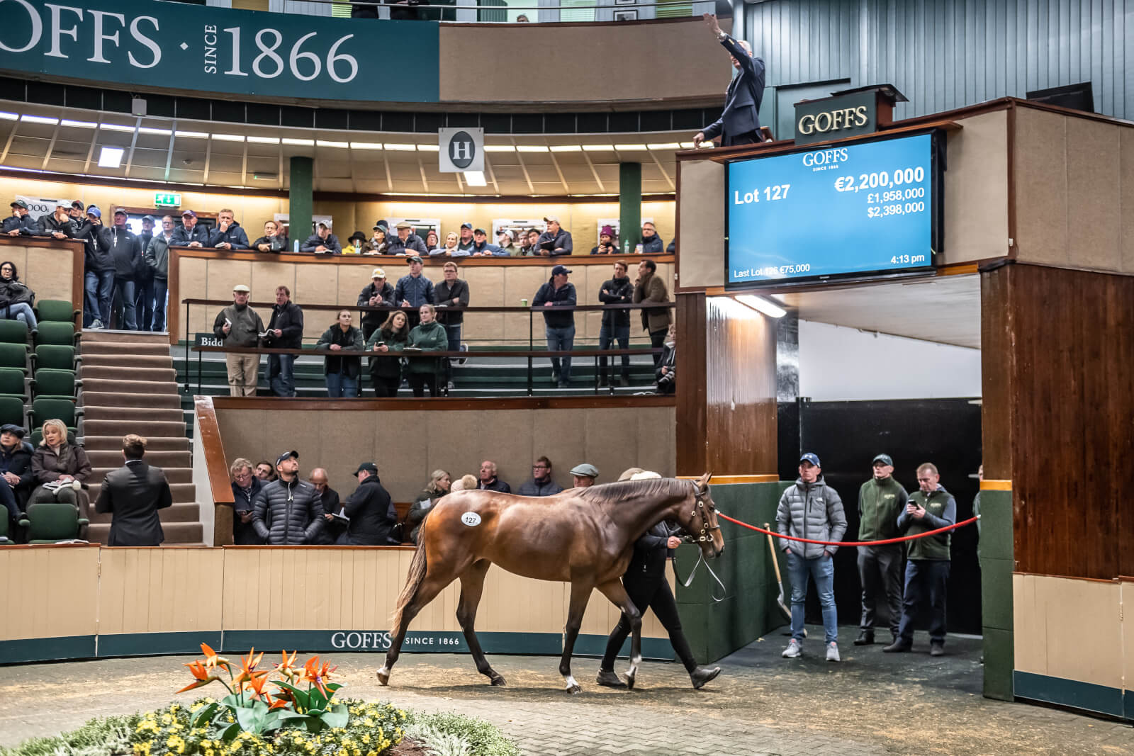 Three Millionaire Yearlings Top Strong First Day At Goffs Orby